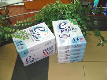 E-Paper 80 (A3)